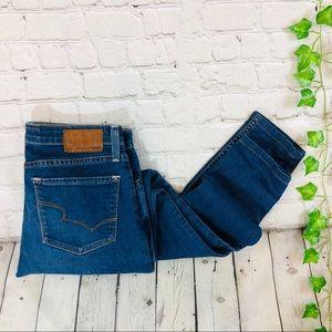 Big Star Alex Mid Rise Skinny Classic Rinse Jeans